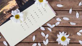 Berbagai Jenis Tipe Kalender Untuk Promosi Bisnis