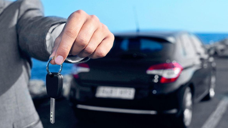 Tips Memulai Bisnis Rental Mobil Dengan Modal Kecil Pranata Printing